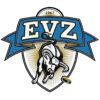 EVZ-Logo mit Parallax-Effekt